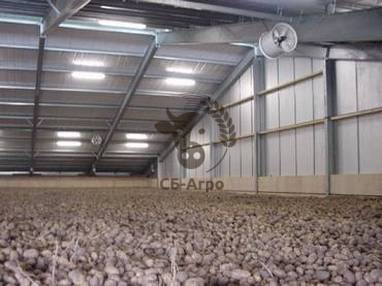 bulk-storage-potatoes-floor-slots